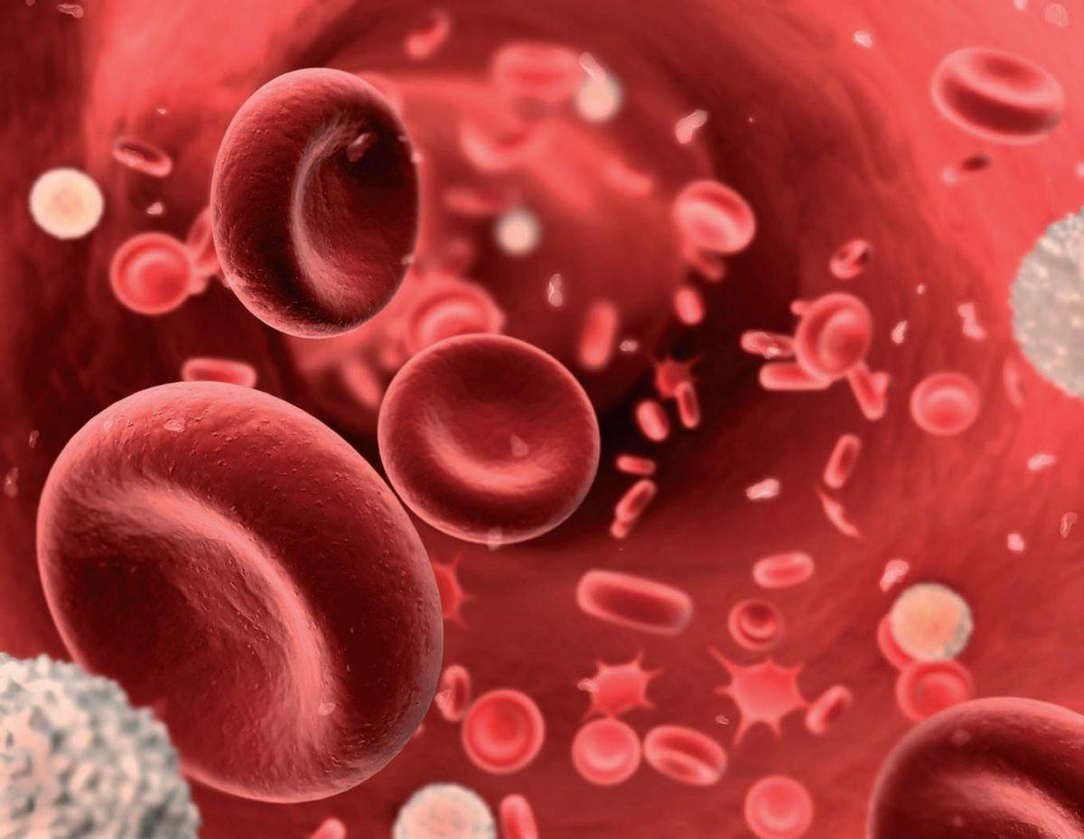Laboratorio-Finca-España-Anemia
