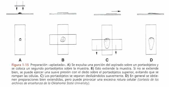 laboratorio-tenerife-citologias