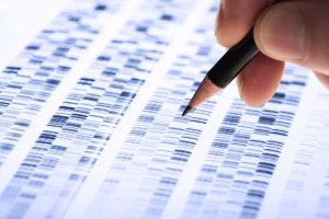 Análisis genético, análisis de ADN en Laboratorio Tenerife